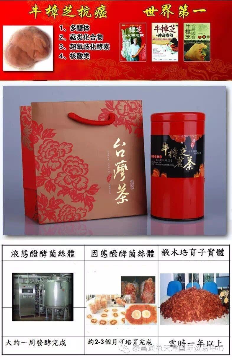 台湾牛樟芝茗茶