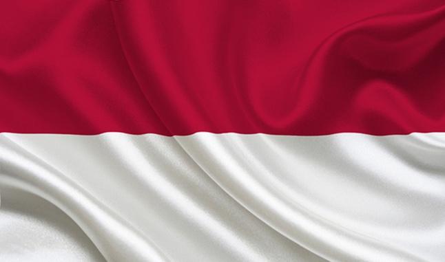 提醒:中国公民切勿携带大额外币现金入出印尼